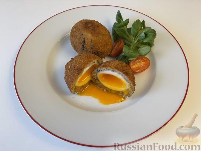 Фото к рецепту: Яйцо по-шотландски