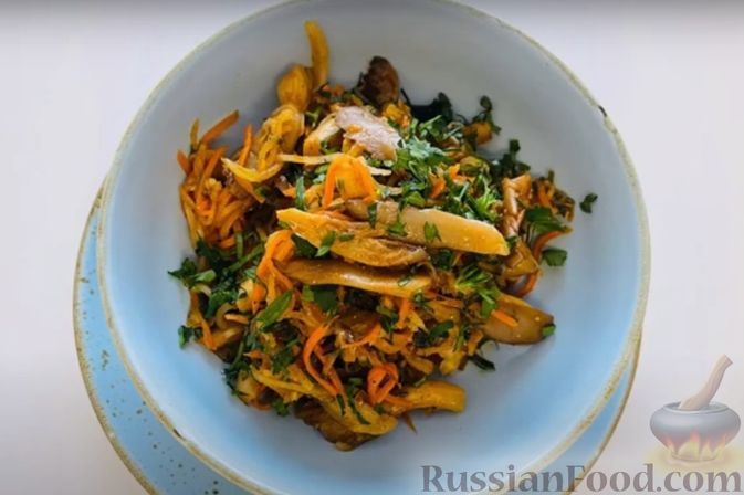 Фото к рецепту: Острый салат с грибами вёшенками, редькой дайкон и морковью