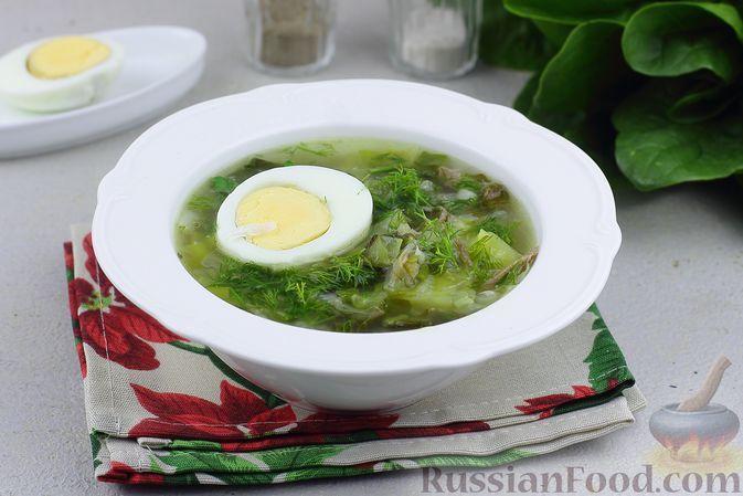 Фото к рецепту: Зелёные щи со свининой