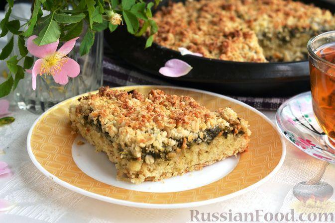 Фото к рецепту: Сладкий овсяный пирог со щавелем
