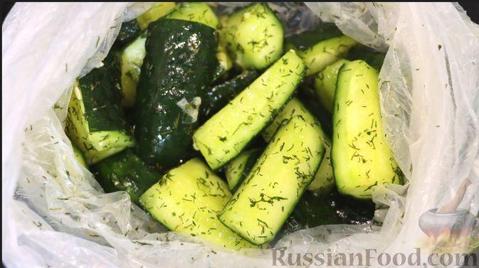 Фото к рецепту: Хрустящие малосольные огурцы с чесноком и укропом (в пакете)