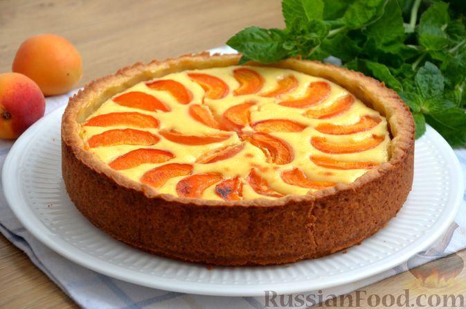 Фото к рецепту: Песочный пирог с творожной начинкой и абрикосами