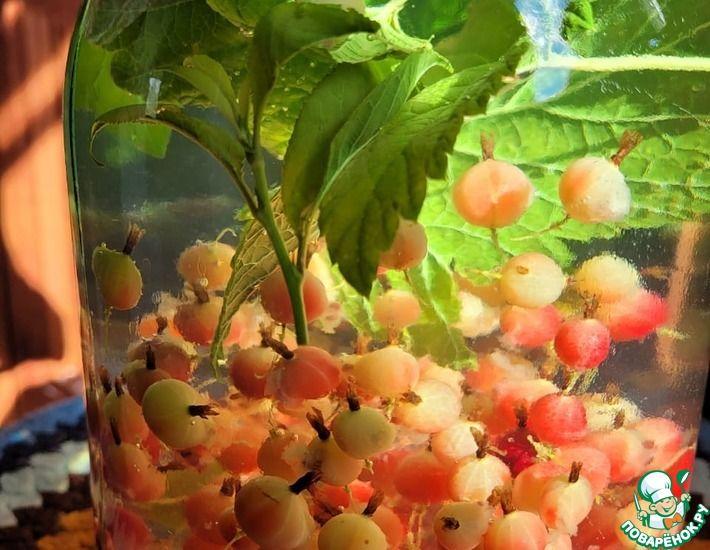 Рецепт: Компот из крыжовника с мятой, листьями смородины и вишни