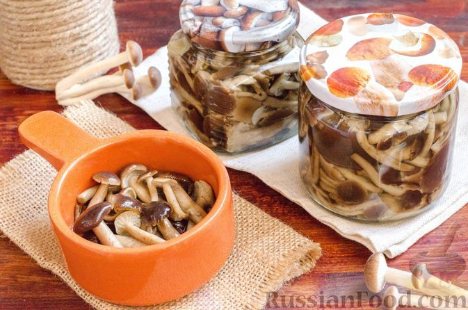Фото к рецепту: Жареные опята (на зиму)